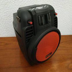 Haut parleur amplifié avec lecteur SD/card/USB/Radio/bluetooth/entrée aux/entrée micro